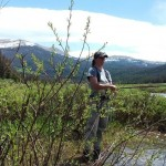 Fly Fishing in Medicine Bow
